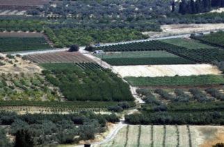 Γλιτώνουν τον συμπληρωματικό ΕΝΦΙΑ τα χωράφια ως και το 2018