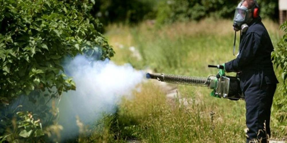 ΕΒΡΟΣ: Που θα… εξολοθρεύσουν τα κουνούπια τα συνεργεία της Περιφέρειας