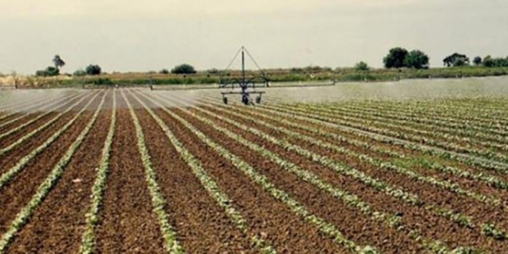 """""""Βρείτε λύση για ΓΟΕΒ και ΤΟΕΒ Έβρου. Οι αγρότες είναι σε απόγνωση"""""""