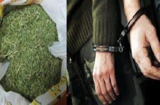 Ναρκωτικά και διακινητές: Απ' όλα έχει ο μπαξές των συλλήψεων στον Έβρο