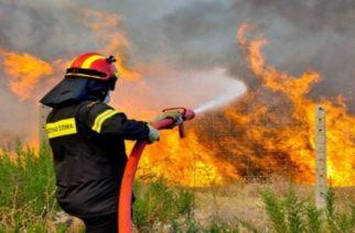 Σύσκεψη για τα μέτρα πρόληψης των πυρκαγιών στην Περιφέρεια Έβρου