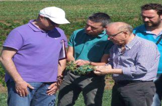 Συνεργασία Δήμου Διδυμοτείχου με Γεωπονικό Πανεπιστήμιο Ορεστιάδας για πειραματική καλλιέργεια οσπρίων