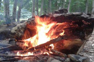 Αλεξανδρούπολη: Ψήνοντας παϊδάκια, έβαλε φωτιά στο δάσος και συνελήφθη