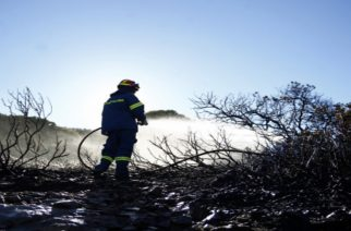 Έσβησε η φωτιά στη Σαμοθράκη, χάρη στην έγκαιρη επέμβαση της Πυροσβεστικής