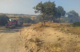 Μικρής έκτασης πυρκαγιά στον Δορίσκο. Σβήστηκε με άμεση παρέμβαση του Εθελοντικού Κλιμακίου Φερών
