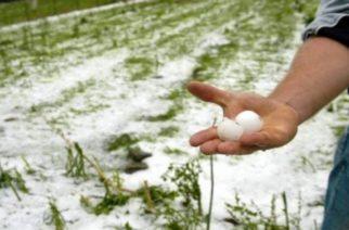 Ζημιές σε 15.000 στρέμματα από το χαλάζι σε χωριά του Τριγώνου