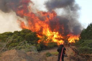 Περιοχές υψηλού κινδύνου για πυρκαγιές νότιος, κεντρικός Έβρος και Σαμοθράκη