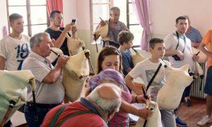 Διδυμότειχο: Αρχίζει αύριο το Σεμινάριο Εβρίτικης Γκάιντας με γλέντι στο Παλιούρι