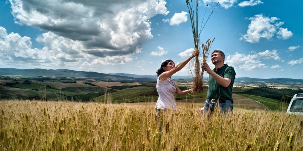 Χωρίς φόρο μεταβίβασης η αγορά γεωργικών και κτηνοτροφικών εκτάσεων