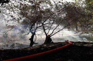 Γιάννης Ναϊτίδης: Ελέγχθηκε ευτυχώς η φωτιά και αποφύγαμε τα χειρότερα