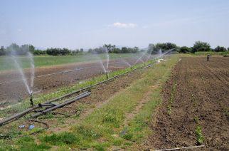 Δημοσχάκης: Αδικούνται οι αγρότες του Βορείου Έβρου και τίθενται εκτός της ενίσχυσης