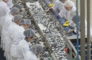 Πριμ σε Σαμοθράκη και άλλα απομακρυσμένα νησιά για μεταποίηση προϊόντων αλιείας και υδατοκαλλιέργειας