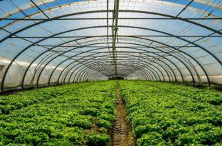 Έρχεται νομοσχέδιο για αξιοποίηση της γεωθερμίας, όπου η Αλεξανδρούπολη είναι πρωτοπόρος