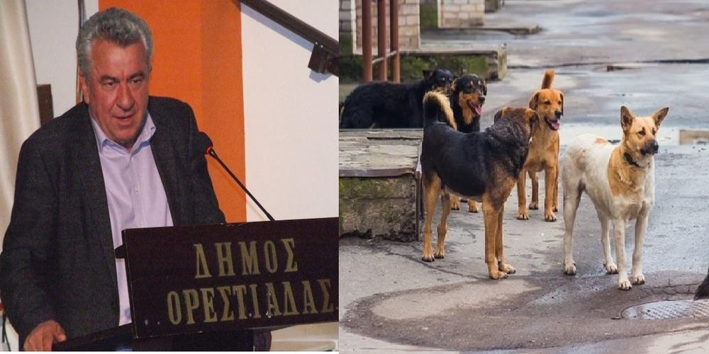 Πρωτοχρονιά σπίτι του θα κάνει ο Αντιδήμαρχος Ορεστιάδας. Αφέθηκε ελεύθερος και θα δικαστεί την Τρίτη