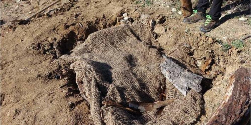 Eιδικές λακκούβες στον Έβρο για να ξεχειμωνιάσουν τα φίδια(φωτό)
