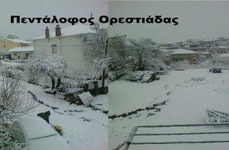 Τα χιόνια ήρθαν στον κεντρικό και βόρειο Έβρο (video+φωτό)