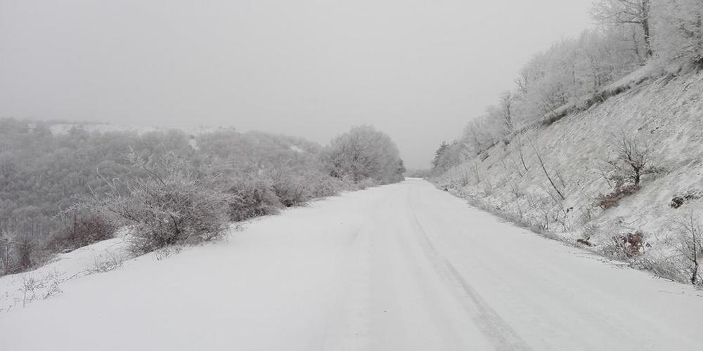 Τα χιόνια ήρθαν αλλά μόνο στον ορεινό Έβρο. Βίντεο+φωτό από Λεπτοκαρυά