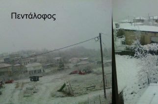 Ξεκίνησε να χιονίζει σε ολόκληρο τον βόρειο Έβρο (φωτορεπορτάζ)