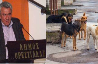 Αθωώθηκε πριν λίγο ο Αντιδήμαρχος Ορεστιάδας Γιάννης Παπαϊωάνου για το θέμα των αδέσποτων