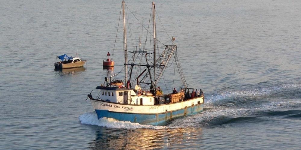 ΣΥΜΒΑΙΝΕΙ ΤΩΡΑ: Περίπου 40 τουρκικά αλιευτικά προκαλούν με παραβιάσεις μεταξύ Σαμοθράκης-Αλεξανδρούπολης
