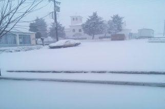 ΔΕΙΤΕ πολλά ΒΙΝΤΕΟ απ' τα χιόνια που ήρθαν πλέον παντού στον βόρειο Έβρο