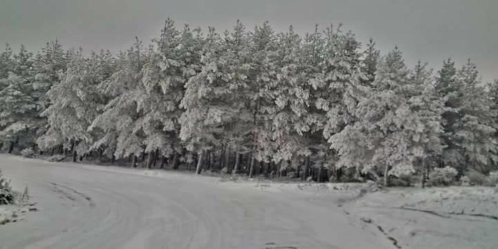 ΚΙΝΔΥΝΟΣ: Δύο άτομα εγκλωβίστηκαν στο αυτοκίνητό τους λόγω χιονόπτωσης στην Λεπτοκαρυά Αλεξανδρούπολης