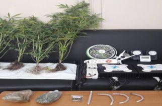Αλεξανδρούπολη: Είχαν σπίτι τους σύστημα υδροπονικής παραγωγής ναρκωτικών, αλλά τους… ξετρύπωσε ο αστυνομικός σκύλος