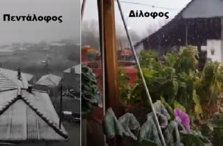 ΤΩΡΑ: Άρχισε να χιονίζει στον βόρειο Έβρο (δειτε ΒΙΝΤΕΟ)