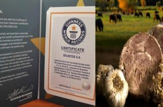 Ο παραδοσιακός Καβουρμάς ΔΕΛΙΝΤΖΗΣ που μπήκε στο ρεκόρ Γκίνες, τώρα και στην Ευρώπη