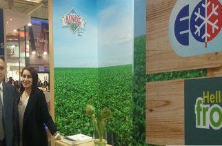 """Η εβρίτικη """"HELLAS Frost"""" δυναμικά με την """"ΑΙΝΟΣ"""" στην κορυφαία έκθεση Food Expo"""