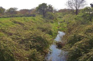 Απορρίφθηκε η προσφυγή του δήμου Αλεξανδρούπολης κατά της Αποκεντρωμένης για αποχαρακτηρισμό έκτασης στο ρέμα Μαίστρου