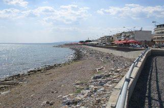 Ν.Παπανικολόπουλος: Ανάπλαση Παραλιακής Ζώνης κάτω από τον Φάρο