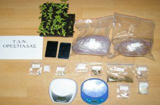 Η ανακοίνωση της αστυνομίας για τη σύλληψη γιου και πατέρα σε Διδυμότειχο, Κυανή για ναρκωτικά
