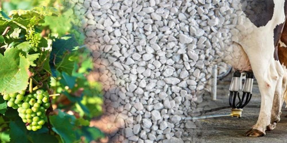 Αλεξανδρούπολη: Η πολλαπλή χρήση του ζεόλιθου σε φυτική και ζωϊκη παραγωγή