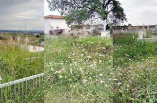 Εικόνα ντροπής παρουσιάζουν τα νεκροταφεία του Σοφικού