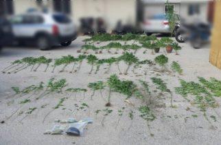 Συνελήφθη στην Καβύλη Ορεστιάδας 55χρονη Βουλγάρα για ναρκωτικά