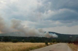 Υπό έλεγχο η πυρκαγιά στη Λευκίμμη. Παραμένουν ισχυρές δυνάμεις της Πυροσβεστικής
