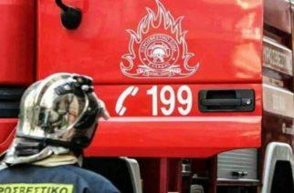 Αλεξανδρούπολη: Άκυρος ο… συναγερμός δυο φορές για πυρκαγιές