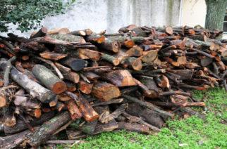 Αντιπυρική προστασία στο Άλσος Αγ. Παρασκευής Φερών