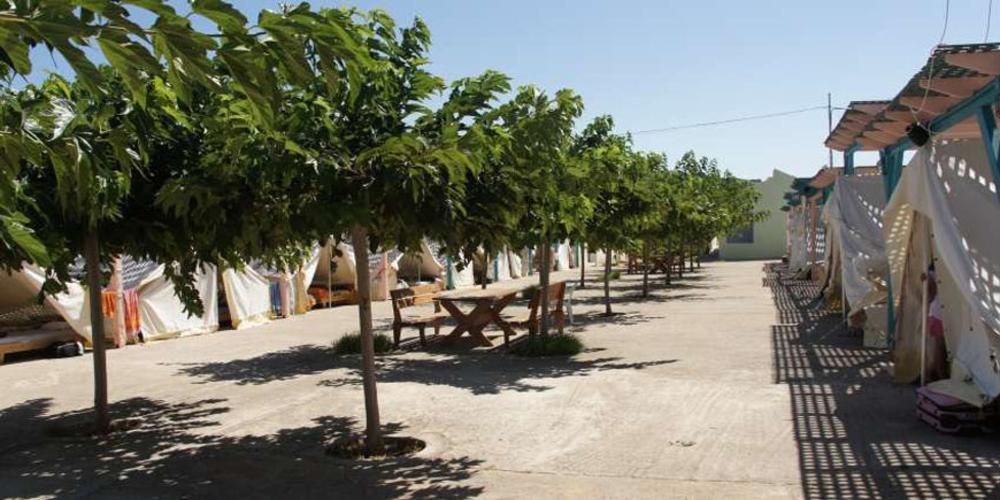 Δήμος Αλεξανδρούπολης: Για την κατασκήνωση 200 ατόμων της Μάκρης, προμηθεύεται 800 πλαστικές καρέκλες
