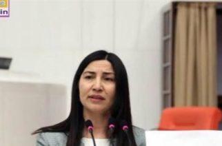 Πέρασε στον Έβρο και ζήτησε άσυλο στην Eλλάδα Τουρκάλα βουλευτής