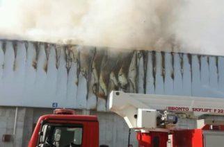 Ανακοίνωση της εταιρείας Sunlight ότι έσβησε η πυρκαγιά στο εργοστάσιο της στην Κομοτηνή