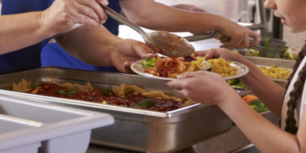 Σε 8 σχολεία του δήμου Διδυμοτείχου τα δωρεάν σχολικά γεύματα στον Έβρο