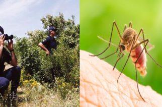 Σε Συνοριοφύλακα που εργάζεται στο Τυχερό το νέο κρούσμα ελονοσίας στον Έβρο