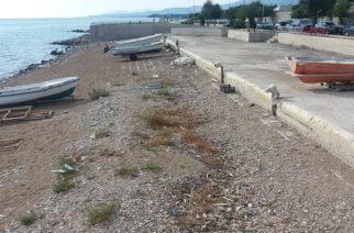 Παρατημένη η παραλιακή ζώνη. Άσχημες εικόνες αντικρίζουν δημότες και επισκέπτες (ΒΙΝΤΕΟ)
