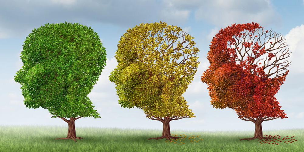 Αλεξανδρούπολη: Δράσεις του Σχολείου Μνήμης για την Παγκόσμια Ημέρα Alzheimer