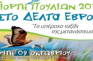 «Ευρωπαϊκή Γιορτή των Πουλιών 2018» στο Δέλτα του Έβρου