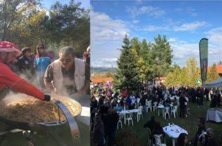 Έρχεται η 10η Γιορτή Μανιταριού στην Δαδιά