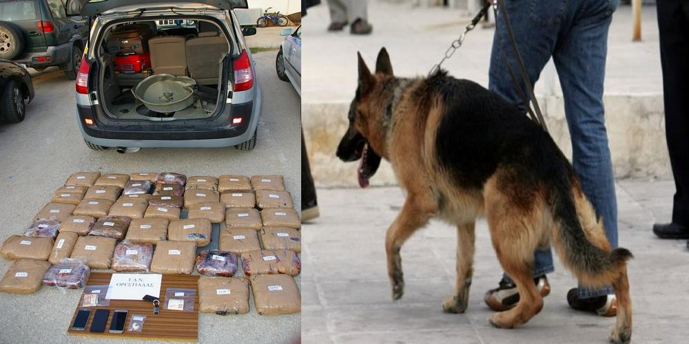 Καστανιές: Ο αστυνομικός σκύλος… μύρισε τα 60 κιλά ναρκωτικών που μετέφεραν δυο Έλληνες και συνελήφθησαν