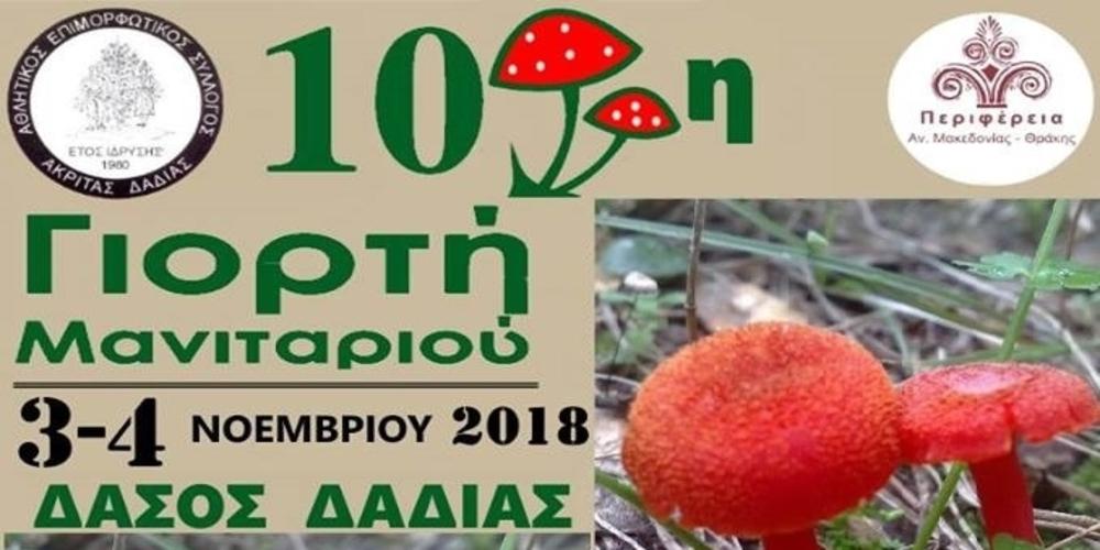 Η 10η Γιορτή Μανιταριού έρχεται το Σαββατοκύριακο στο Δάσος της Δαδιάς